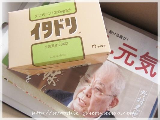イタドリ 最安値①シ128.JPG